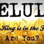 ELUL - Król jest na dworze. A ty?