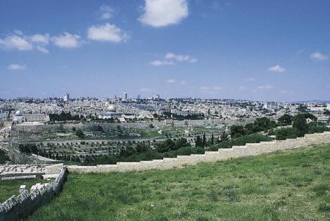 Proście o pokój dla Jeruzalem! Niech żyją w pokoju ci, którzy cię miłują! (Psalm 122,6)